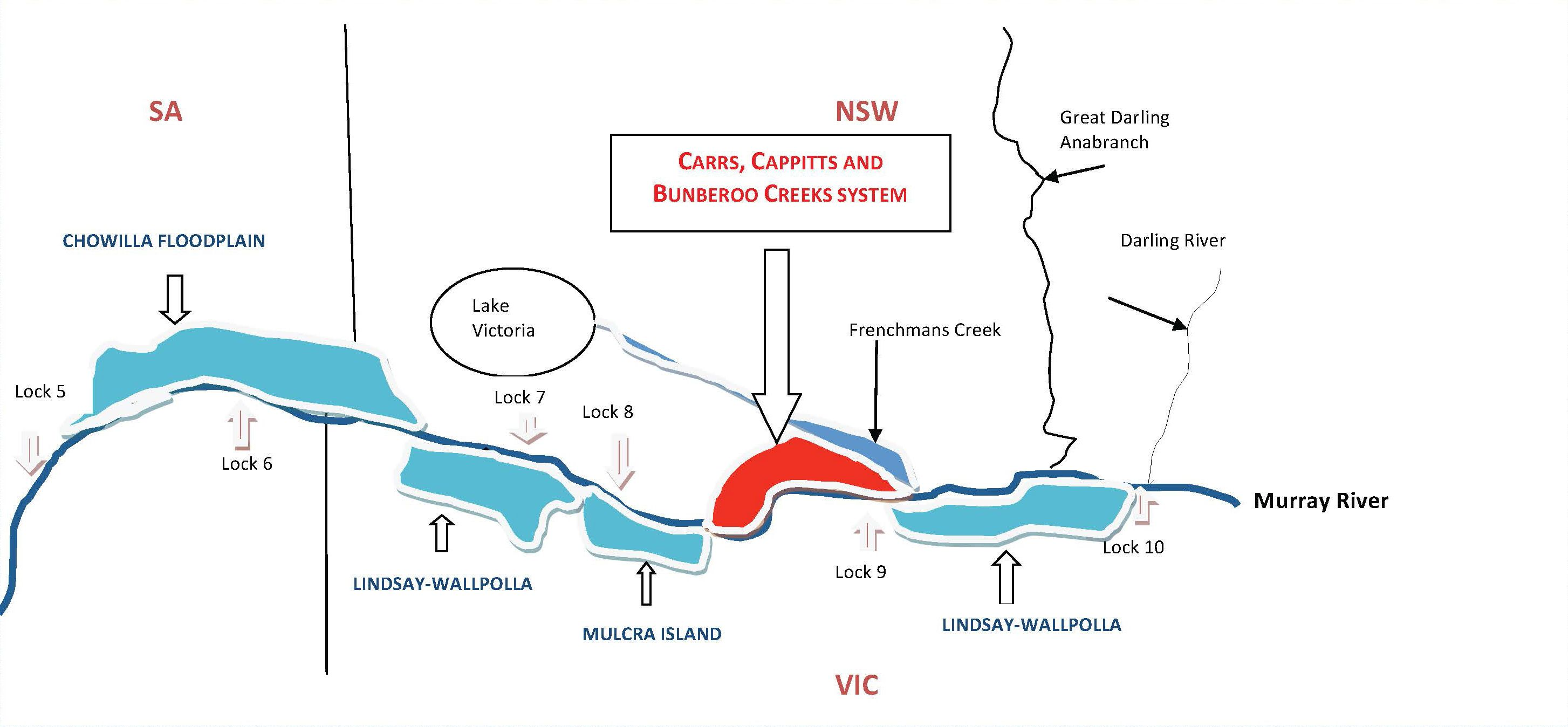 Schematic diagram showing the CCB Creeks system (shaded red) in relation to The Living Murray icon sites (shaded blue). Not to scale.