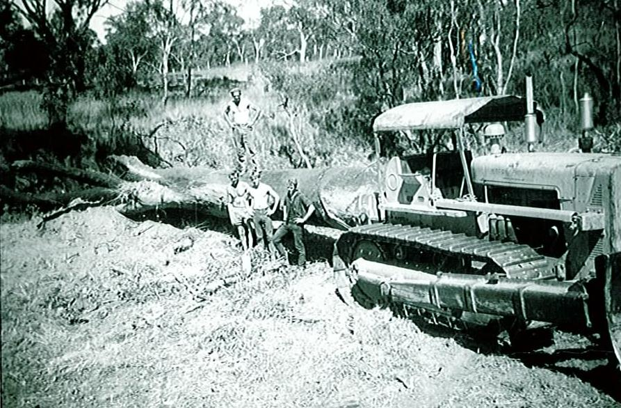 Historically, large wood was removed from the Glenelg River by the Glenelg River Improvement Trust (GRIT)