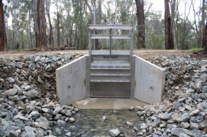 A new box culvert improves access for native fish and increases water flow capacity. Photo: R Webster
