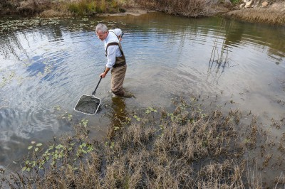 Monitoring the impacts of riparian zone management