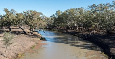 Namoi River, Walgett. Photo by Irene Dowdy.