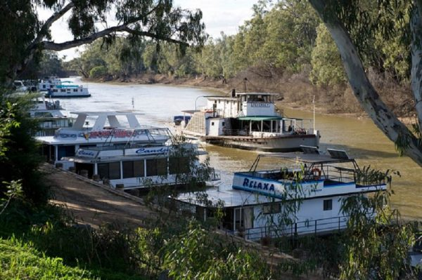 River boats on the Murray River. Photo by Irene Dowdy.